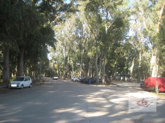 Πρέβεζα: Πρόταση Ενοποίησης Και Αξιοποίησης Του Περιαστικού Πρασίνου Της Πόλης Θα Υποβάλλει Ο Δήμος Πρέβεζας