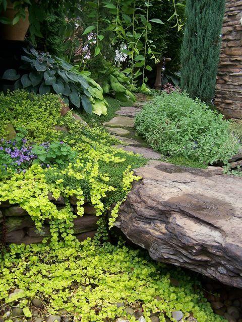 Great Gardens Amp Ideas Gardening Stuff