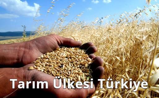 Tarım Ülkesi Türkiye
