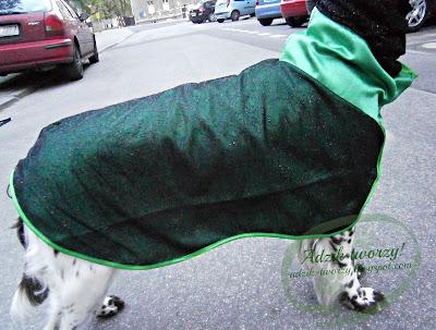 Wystawowe psie ubranko - koronkowy kombinezon dla psa
