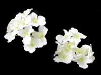 https://scrapkowo.pl/shop,kwiaty-materialowe-hortensji-biale-9szt-,8701.html