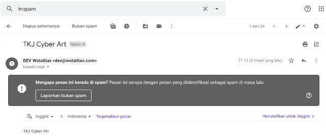 www.tkjcyberart.org , _Tuan2Fay_ - Cara Mengatasi Email Domain Yang Masuk Spam Gmail