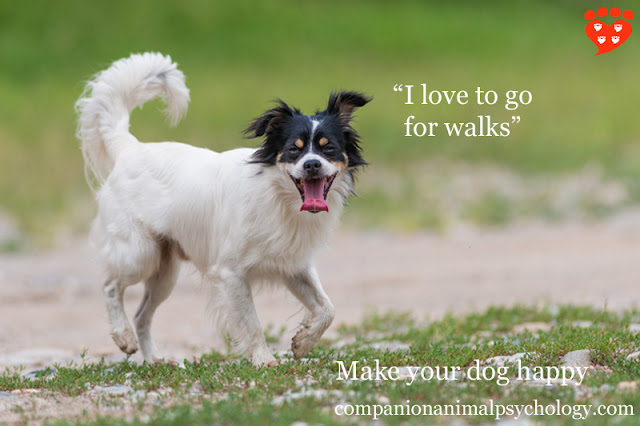 "Make your dog happy: ""I love to go for walks"""