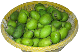 Green or unriped rw mango for pickle.