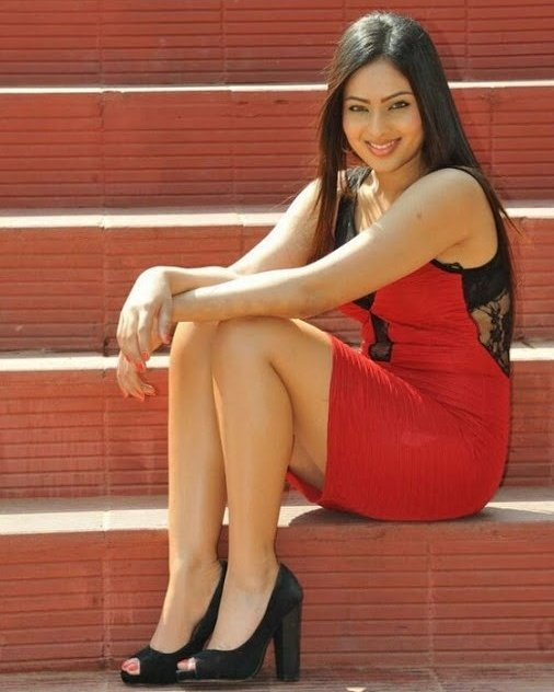 Actress NikeshaPatel Latest Photos