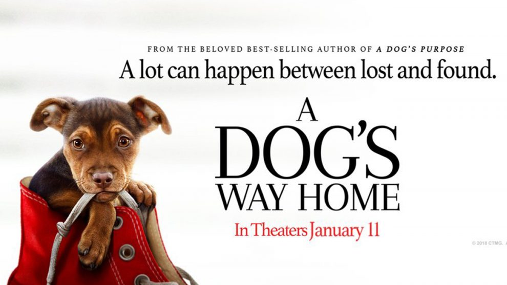 Đường Về Nhà Của Cún Con - A Dog's Way Home (2019)