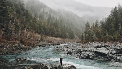 Livre : L'inconnu de la forêt •• Harlan Coben