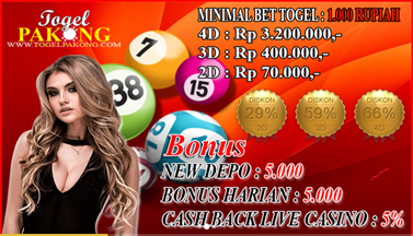 Profil Bandar Togel Online Favorit New Member Togelpakong.com