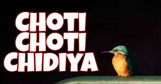 Choti Choti Chidiya Song (Lyrics) - Kids Christian Song
