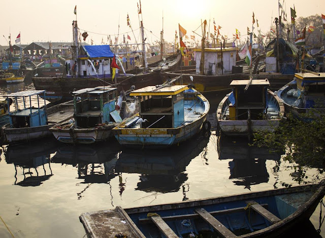 anchored, boats, docked, india, morning, mumbai, parked, sassoon docks, CDP Theme Day, friend,
