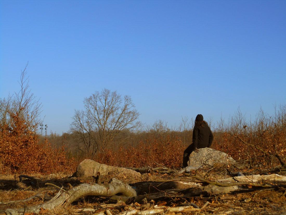 11 marzo 2016, in bosco