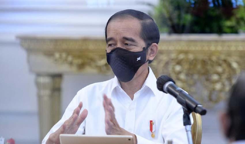 Jokowi lockdown seluruh kota untuk apa