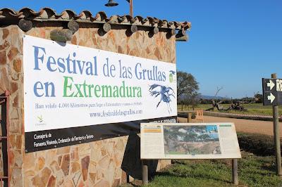 Cartel festival de Grullas en Extremadura