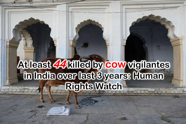 At least 44 killed by cow vigilantes in India over last 3 years: Human Rights Watch