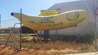 BIG Banana of Carnarvon   Australian BIG Things