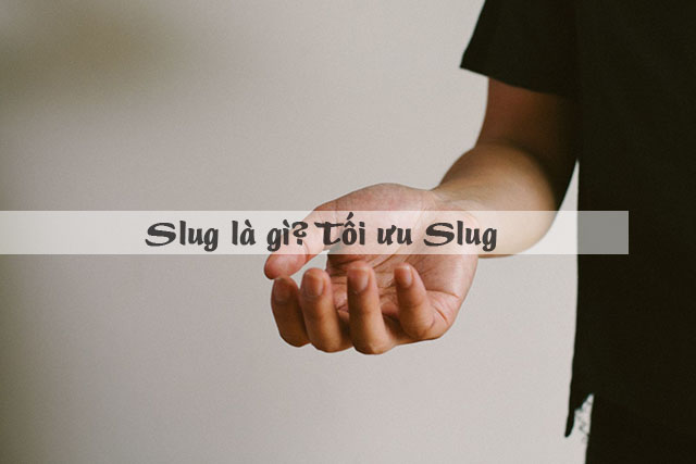 Slug là gì? Cách tối ưu Slug hiệu quả nhất cho WordPress