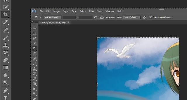 Cara Crop Gambar dan Foto di Photoshop