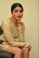 Actress Pooja Roshan Stills in Golden Short Dress at Box Movie Audio Launch  0093.JPG