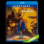 Animales fantásticos: Los crímenes de Grindelwald (2018) BDRip 1080p Audio Dual Latino-Ingles