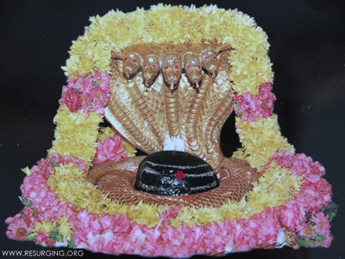 The Mallikarjuna Shiva Lingam