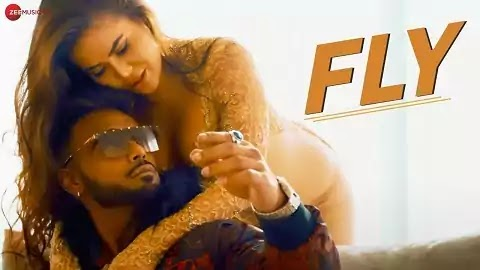 Fly Lyrics in Hindi Font | Indeep Bakshi