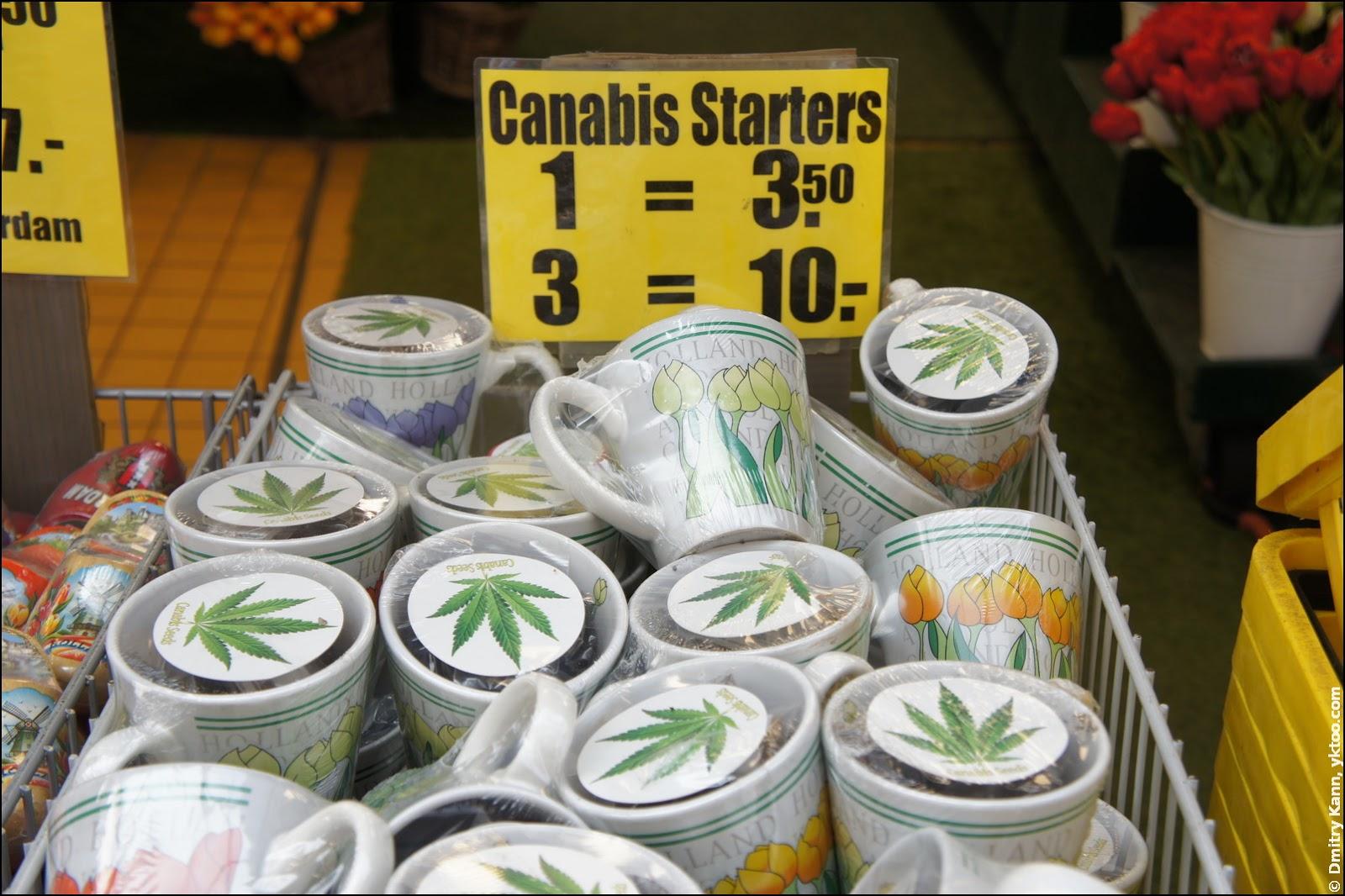 Набор начинающего марихуановода.