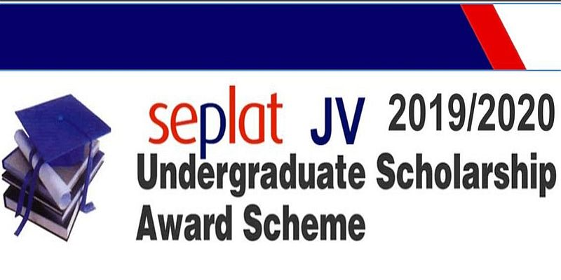 Undergraduate Scholarship Alert: How to Apply