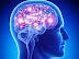 Best  Neurologist (Neurology Specialist) Doctor List Near Me in Dhaka - Best Specialist Doctor