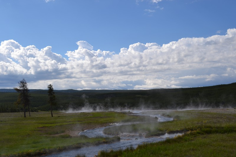 Yellowstone, Wyoming, usa, parc