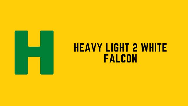 HackerRank Heavy Light 2 White Falcon problem solution