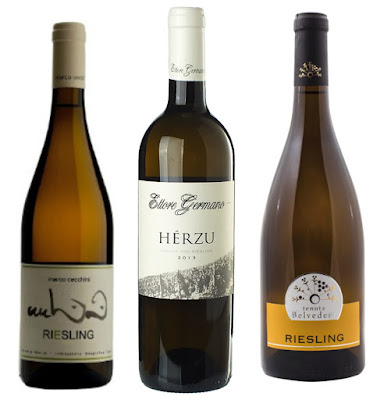 riesling in italia
