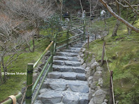 Stone steps and bamboo fencing, Kyoto, Japan