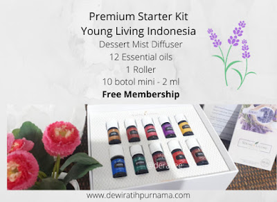 premium starter kit yleo