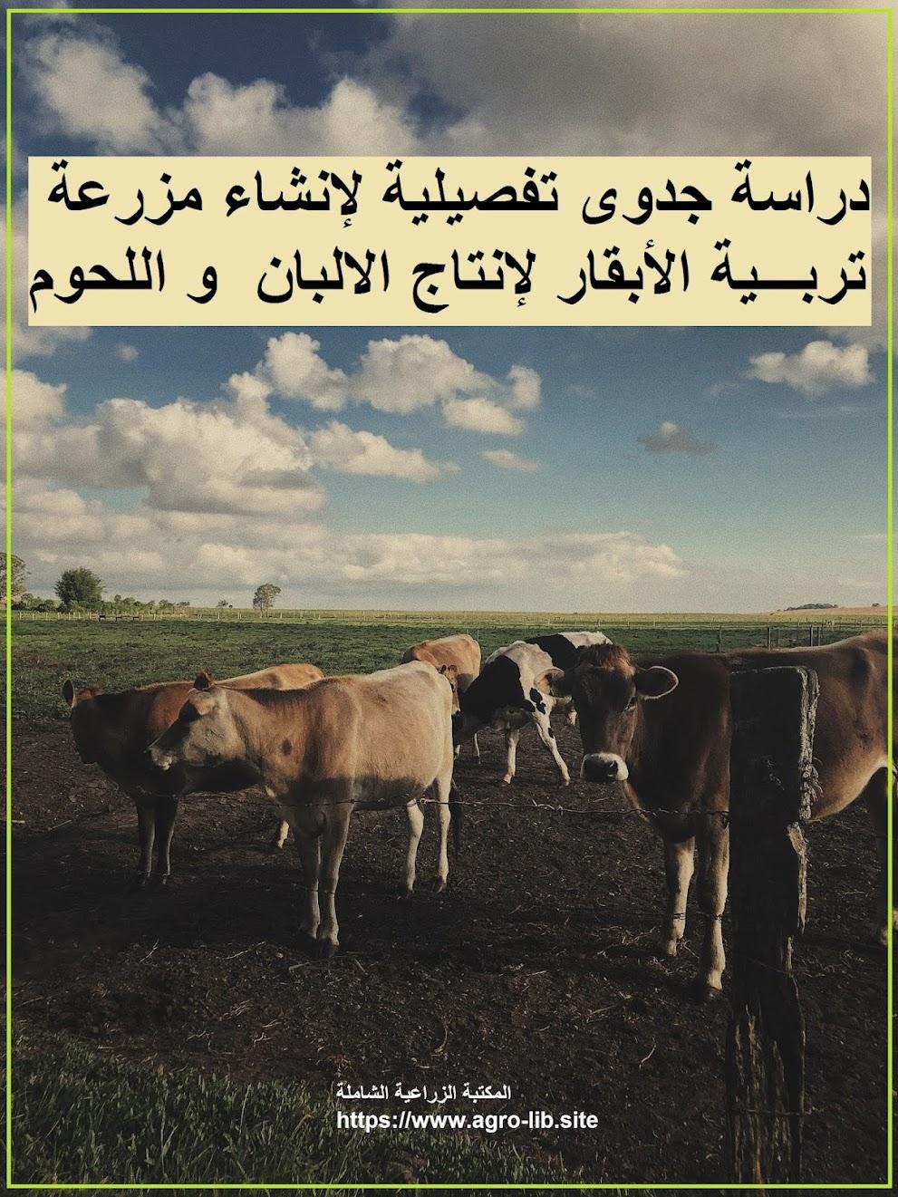 كتاب : دراسة جدوى تفصيلية لإنشاء مزرعة تربية الأبقار لإنتاج الالبان  و اللحوم