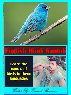 Learn the names of birds in Santhali languagewebsite seo ...