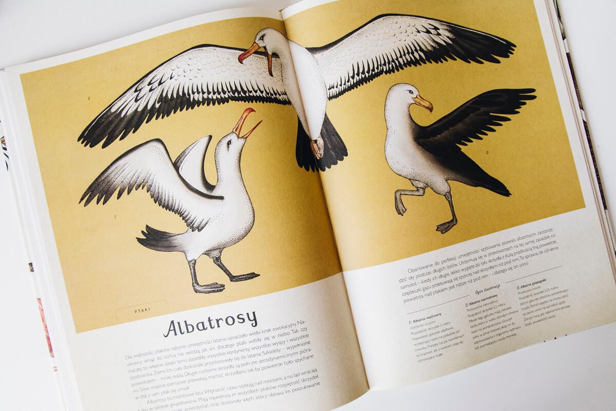 Pięknie wydane książki dla dzieci