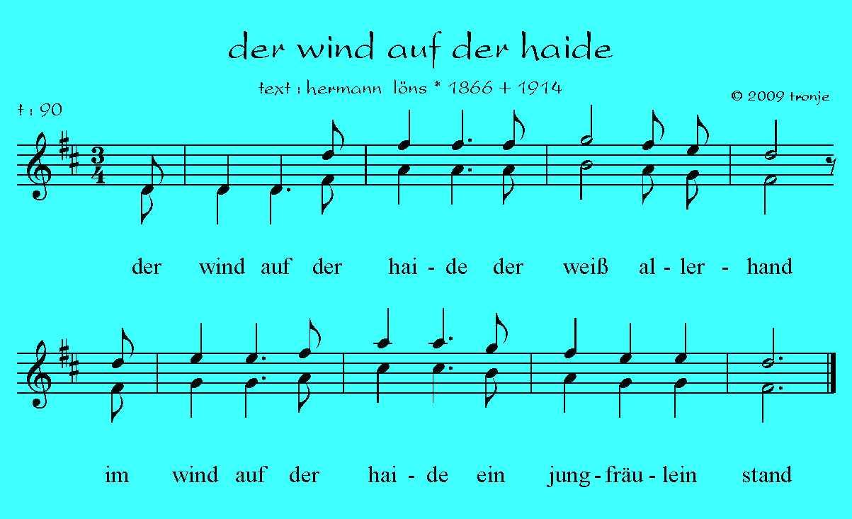 Der wind heulend auf dem gebiet