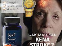 Jual 100% Produk Kesehatan Kyani Sunrise Kyani Sunset Kyani Nitro Xtreme di Soreang WA 081315203378