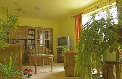 Green Living home design
