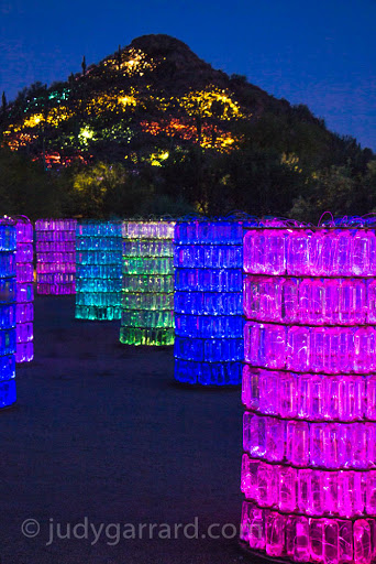 Bruce Munro Sonoran light exhibit at Desert Botanical Gardens