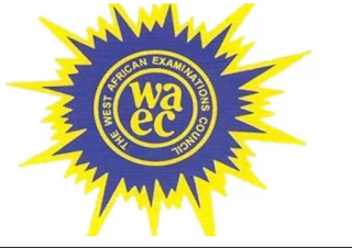 Seven ways on how to check your 2019 WAEC results