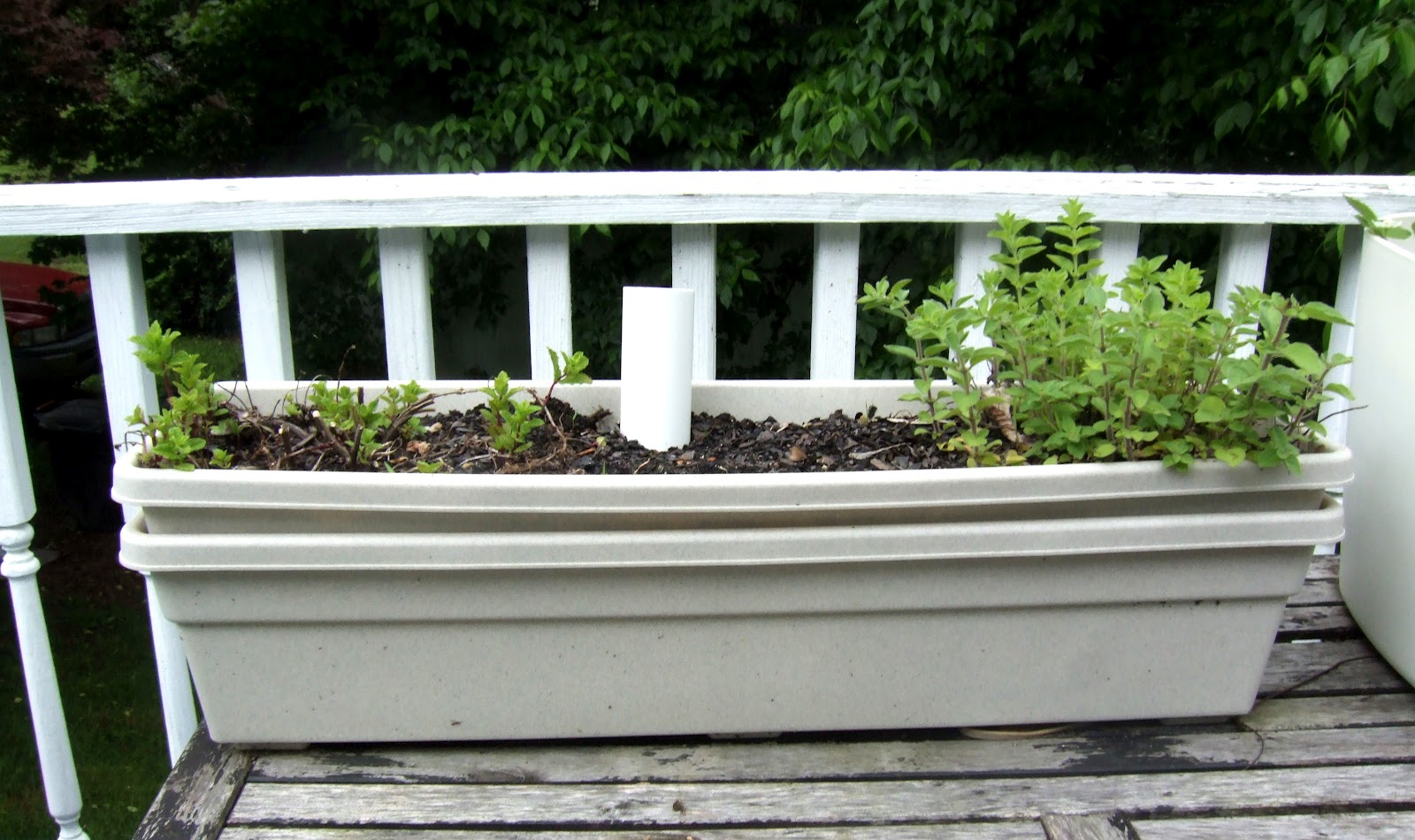Two nesting pots as a self-watering planter option
