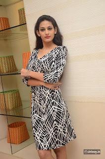 Swetha Jadhav Stills at Celebrations of 101 Trendz Exhibition Curtain Raiser Press Meet