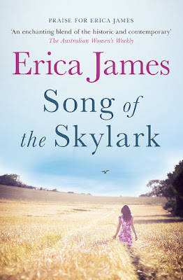 Song of the Skylark book cover