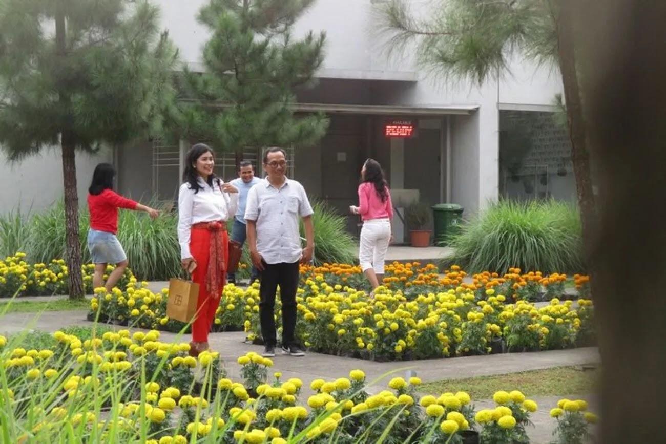 Rumah Atsiri Indonesia, Kolaborasi Keindahan dan Edukasi