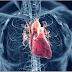 Atividade Física é o ponto central da Reabilitação Cardiopulmonar