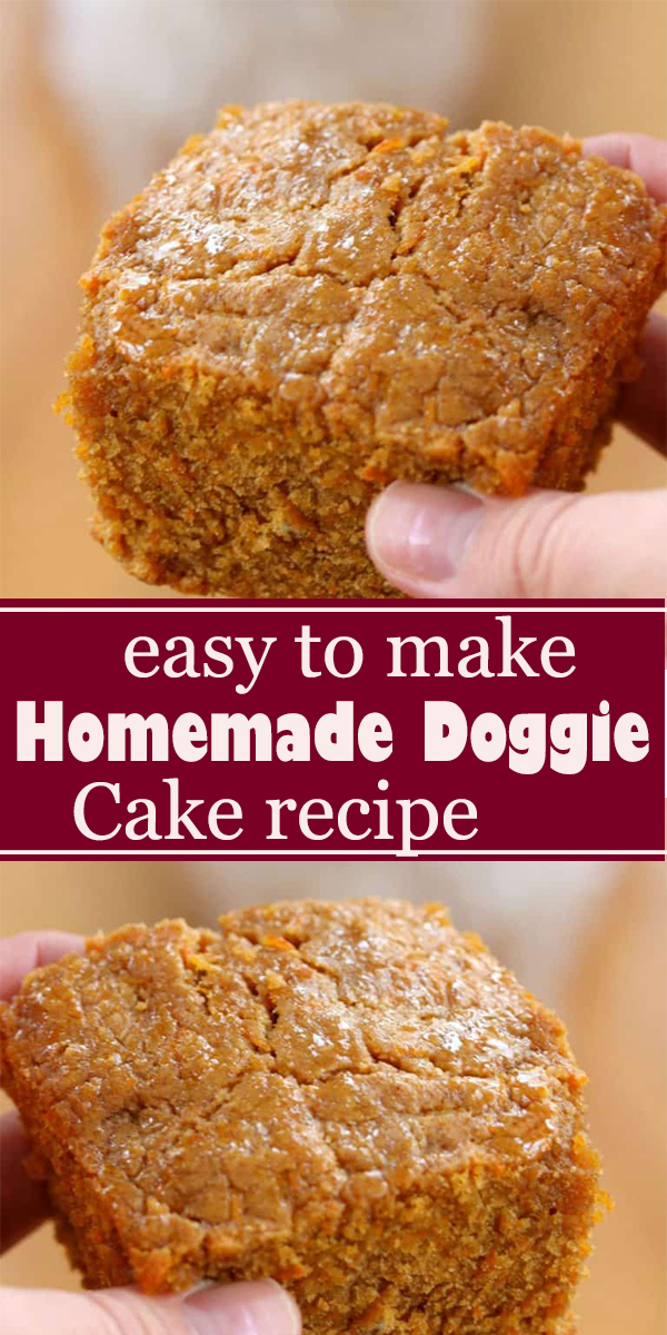 easy Homemade Doggie Cake #easy #Homemade #Doggie #Cake #easyHomemadeDoggieCake
