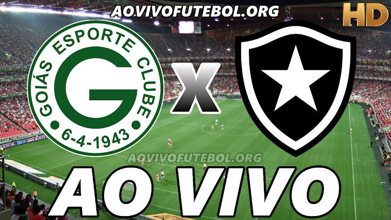 Assistir Goiás vs Botafogo Ao Vivo HD