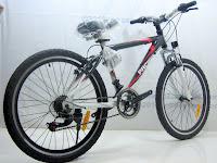 4 Sepeda Gunung PACIFIC MASSERONI 2.0 18 Speed Shimano 24 Inci