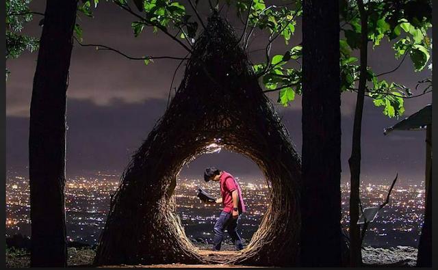 Keindahan Pinus Pengger - Harga Tiket, Lokasi dan Fasilitas Terbaru